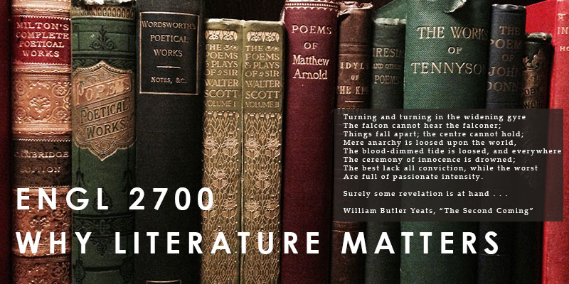 why literature matters Literature matters because it allows for experiences important to the living out of a sophisticated and satisfying human life because other arenas of culture cannot provide them to the same degree and because a relatively small number of texts carry out these functions in so exceptional a manner that we owe it to past and future.