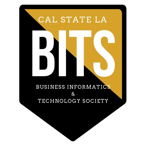 Business Informatics and Technology Society logo