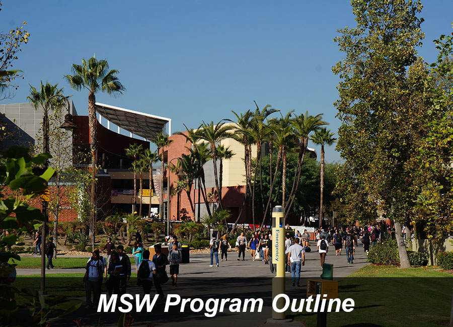 MSW Program Outline