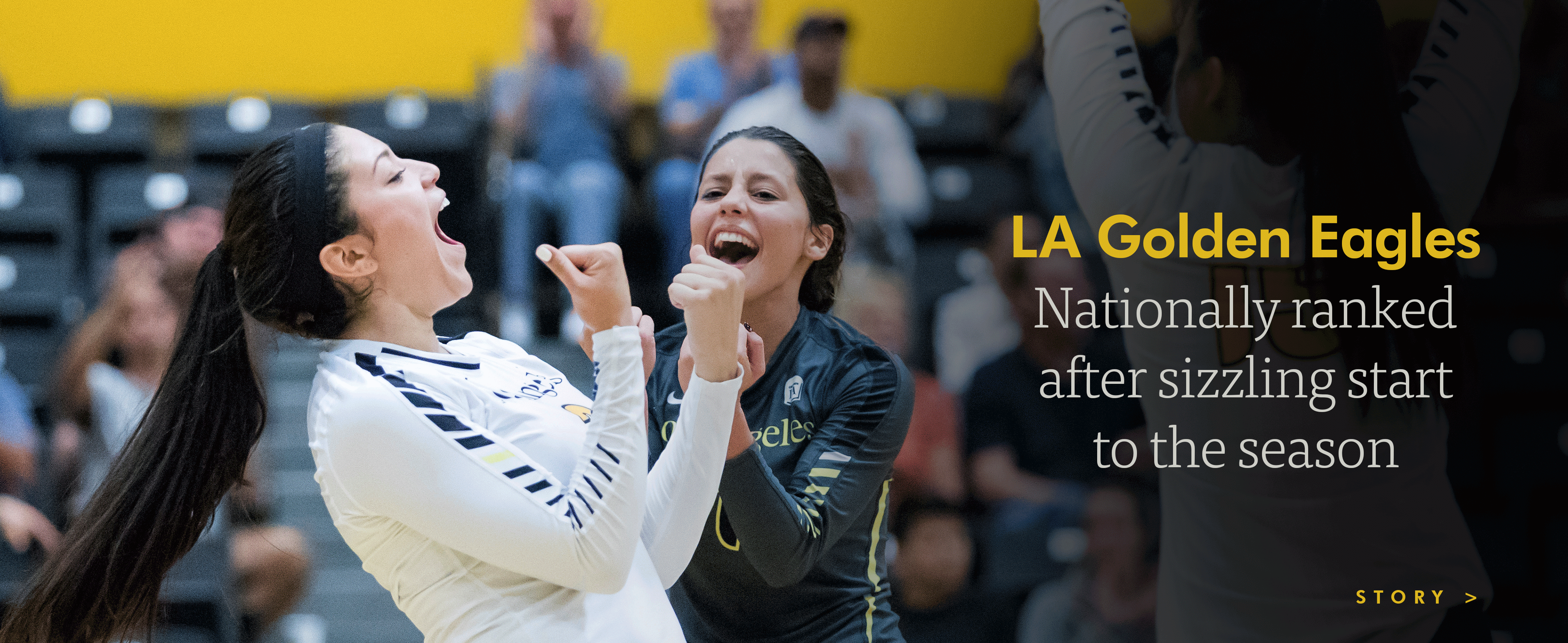 LA Golden Eagles nationally ranked after sizzling start to the season