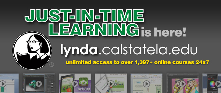 lynda.com Training