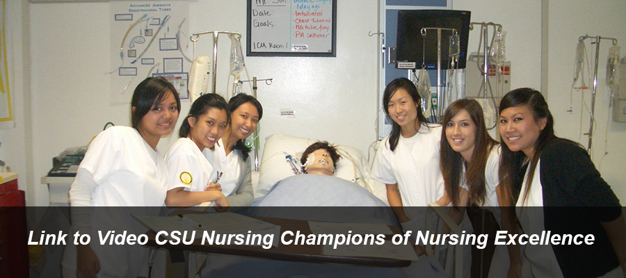 Link to Video CSU Nursing Champions of Nursing Excellence