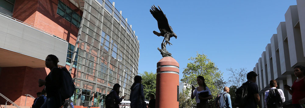 photo of Golden Eagle Statue