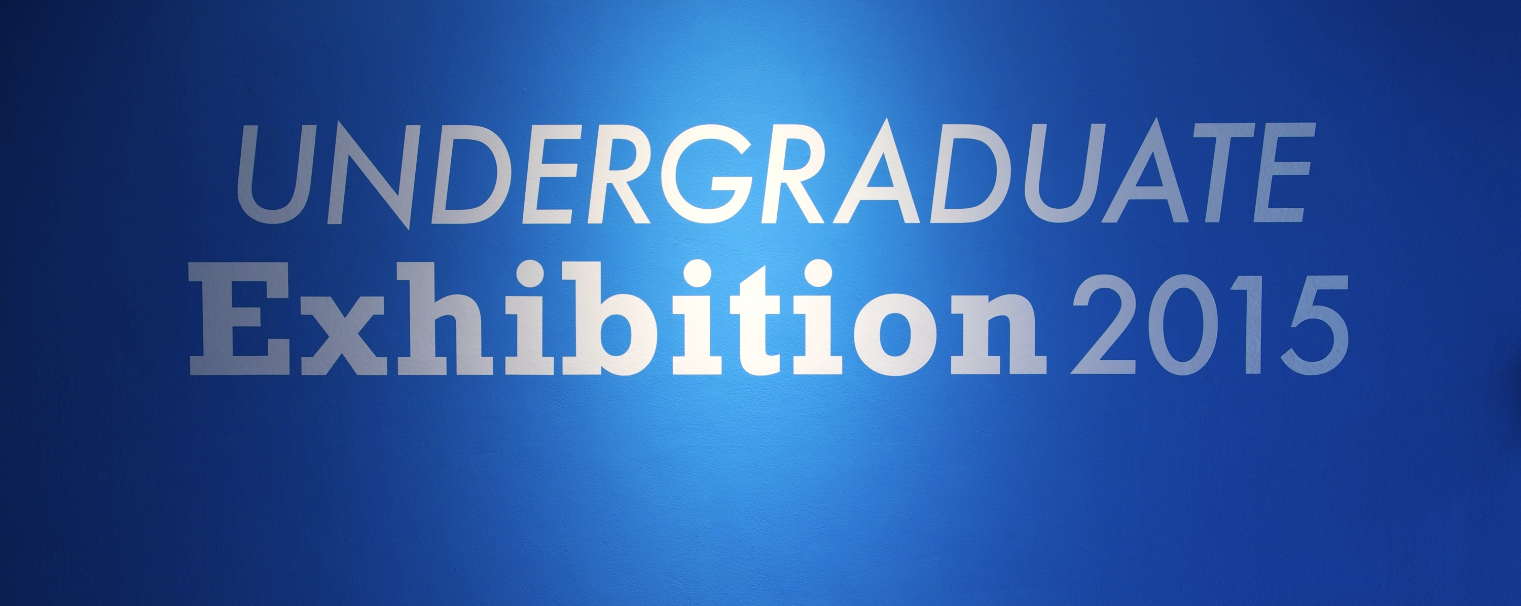 Undergraduate Exhibition 6