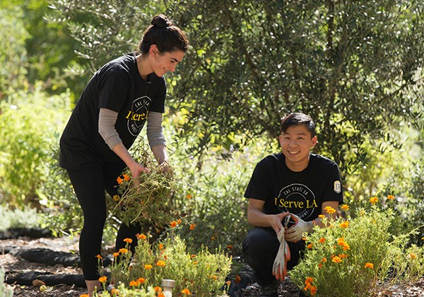 Two volunteers working in a garden for the I Serve LA program