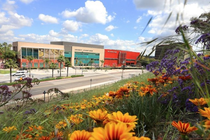 The University-Student Union building on a sunny day with flowers in the foreground
