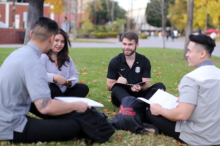 Students studying together outside sitting on a lawn