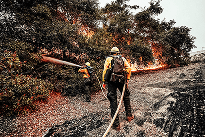 Firefighter fighting fire in a forest