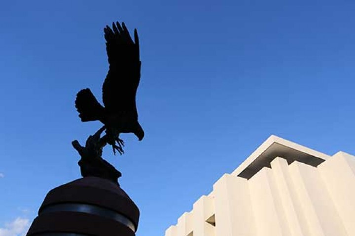 Golden eagle statue and library building