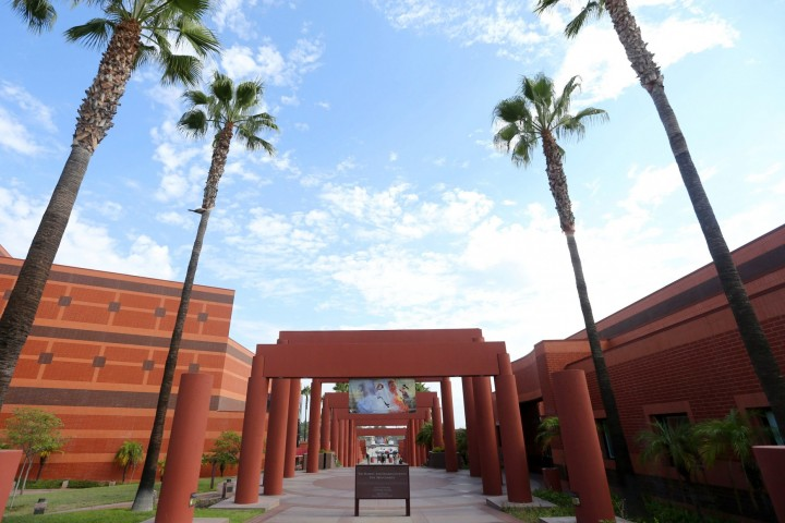 Luckman Arts Complex flanked by tall, skinny palm trees.