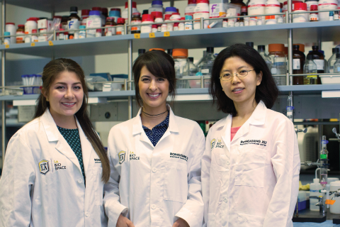 Professor Xin Wen and her research team.