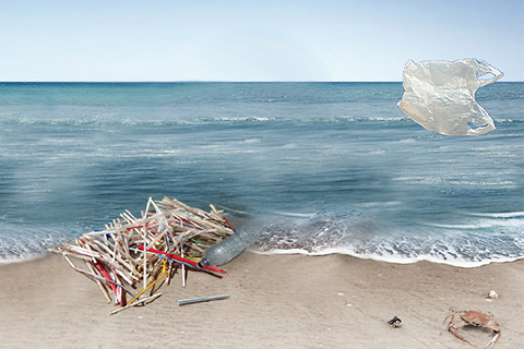 Plastic straws and plastic bag by shoreline
