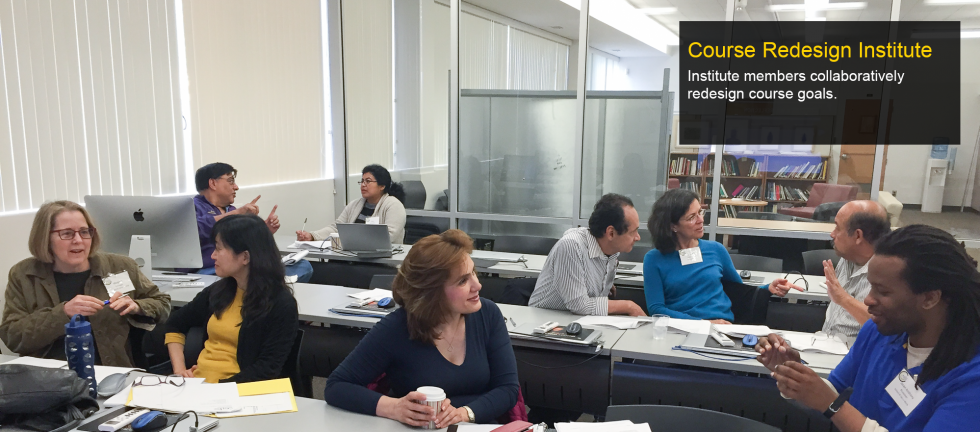 Institute members collaboratively redesign course goals.