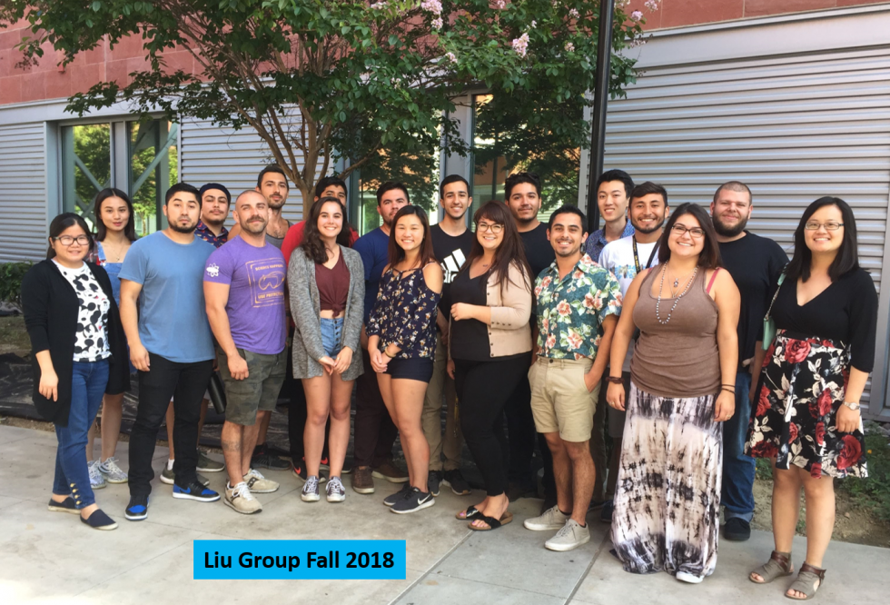 Liu Group 2018