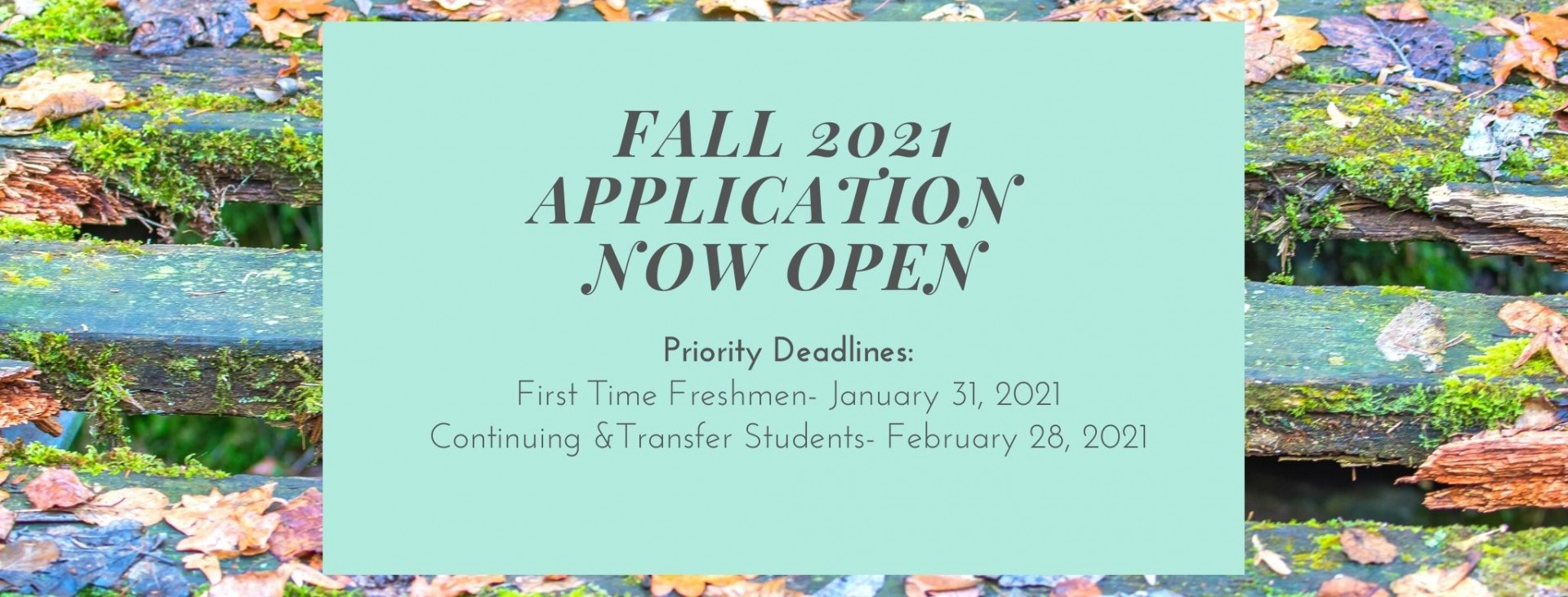 Fall 2021 application now open priority deadline is January 31 for freshmen, and February 28 for transfer and continuing student